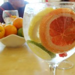 Taller de Gin Tonic en el Café de Oriente de Madrid/Gin Tonic Workshop in Café de Oriente in Madrid