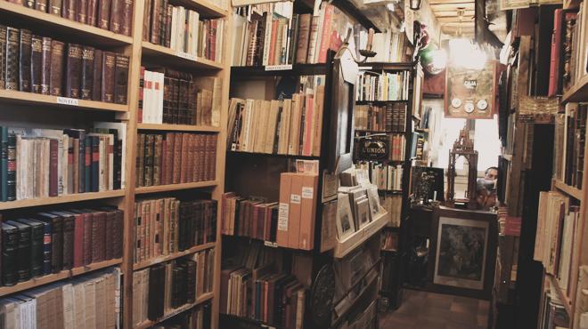 Librería Segovia