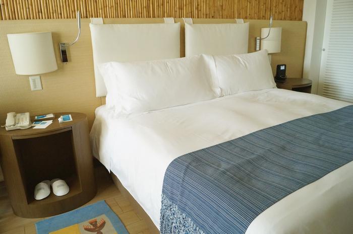 Hotel Paracas XIX