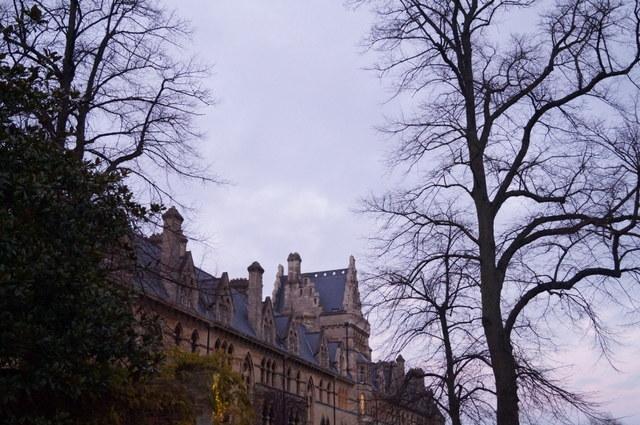 Harry en Oxford IX