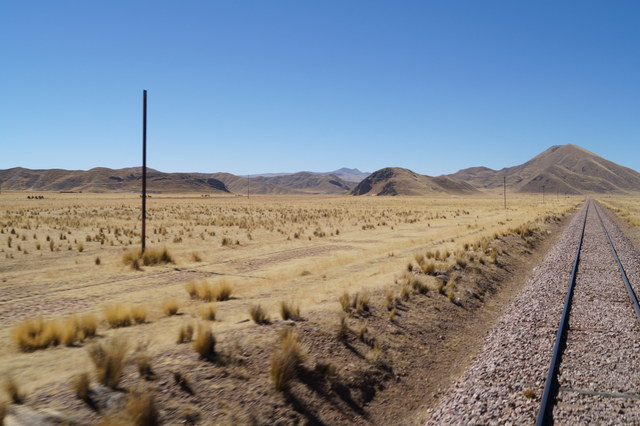 Tren Puno Cusco VII