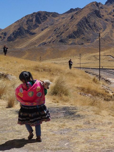 Tren Puno Cusco XV