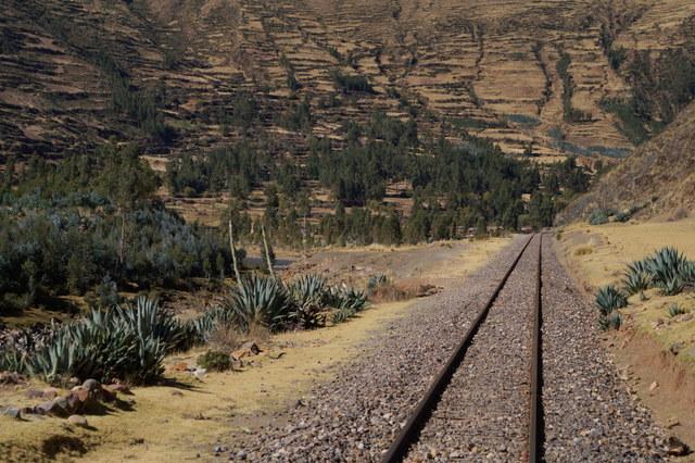 Tren Puno Cusco XVI