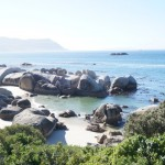 Mini Road Trip desde Ciudad del Cabo: Boulders y Cabo de Buena Esperanza/A mini Road Trip from Cape Town: Boulders and Cape of Good Hope