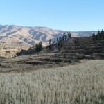 El Valle del Colca: increíbles paisajes infinitos en Perú/The Colca Valley: amazing endless landscapes in Peru